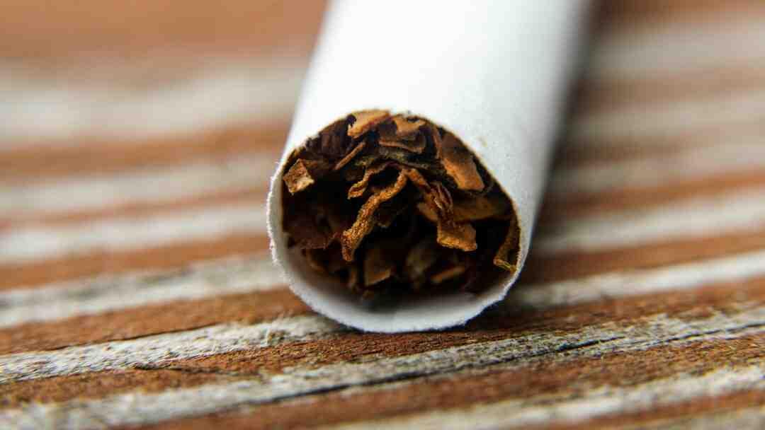 Comment faire pousser du tabac ?