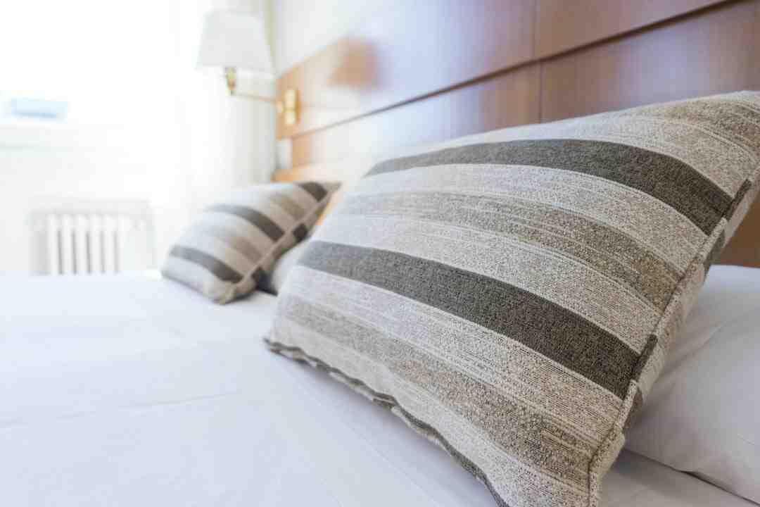 Produits de nettoyage et répulsifs : Avis, Tarif, Prix 2021